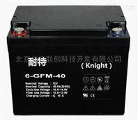 6-GFM-40耐特蓄电池6-GFM-40