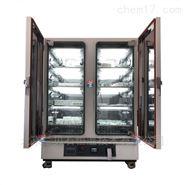 药品强光稳定性试验箱800TPS恒温