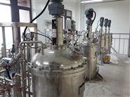 智能型双联机械通风发酵罐