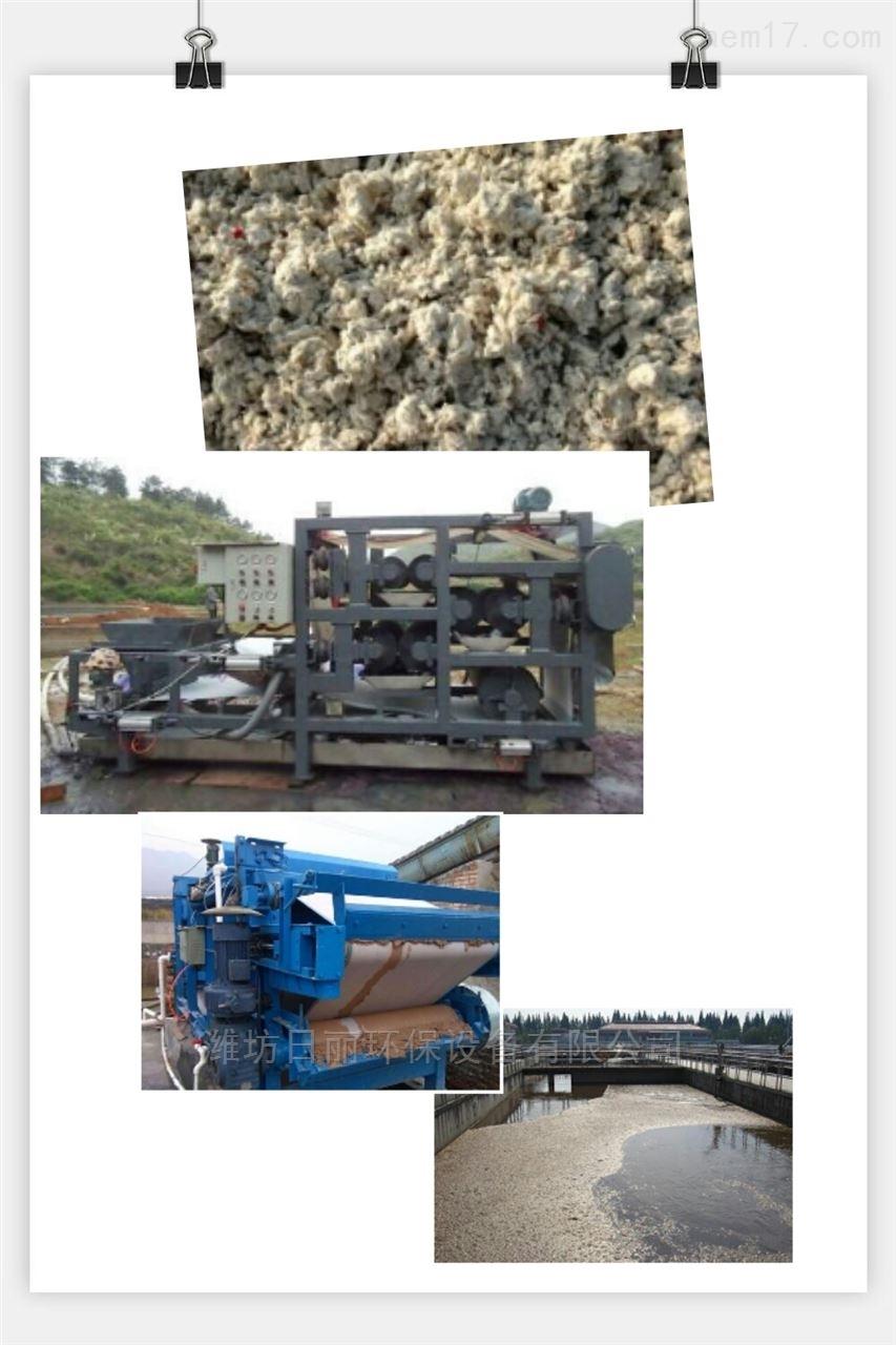 江西省纸浆污泥脱水设备RL带式压滤机