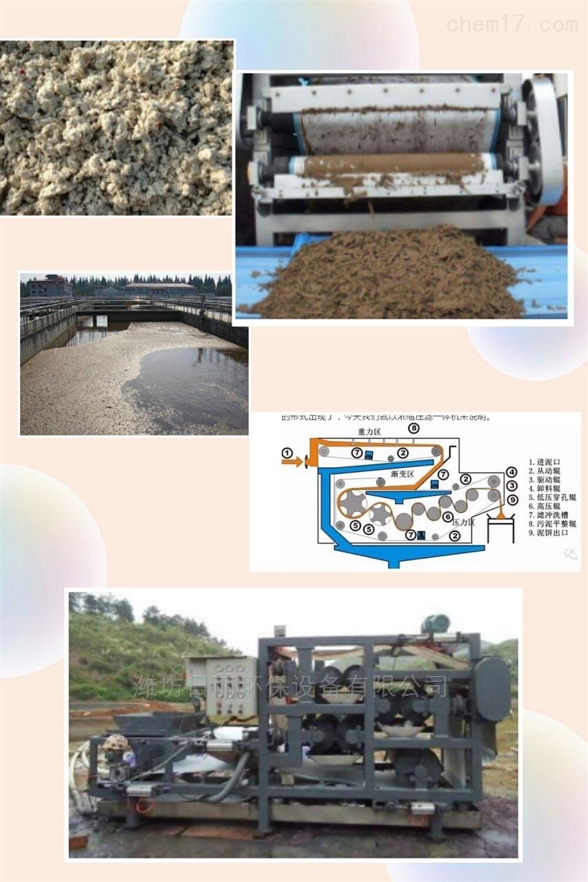 浙江省水产食品污泥脱水设备RL带式压滤机