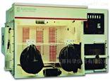 AW500SG/TG英国ELECTROTEK 厌氧培养工作站