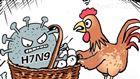 禽流感病毒亚型H5检测试剂RT-PCR核酸