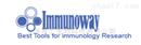 ImmunoWay代理ImmunoWay磷酸化抗体经销商