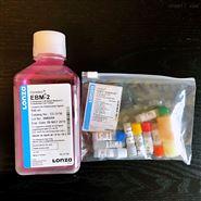 Lonza EGM-2 内皮细胞培养基套装