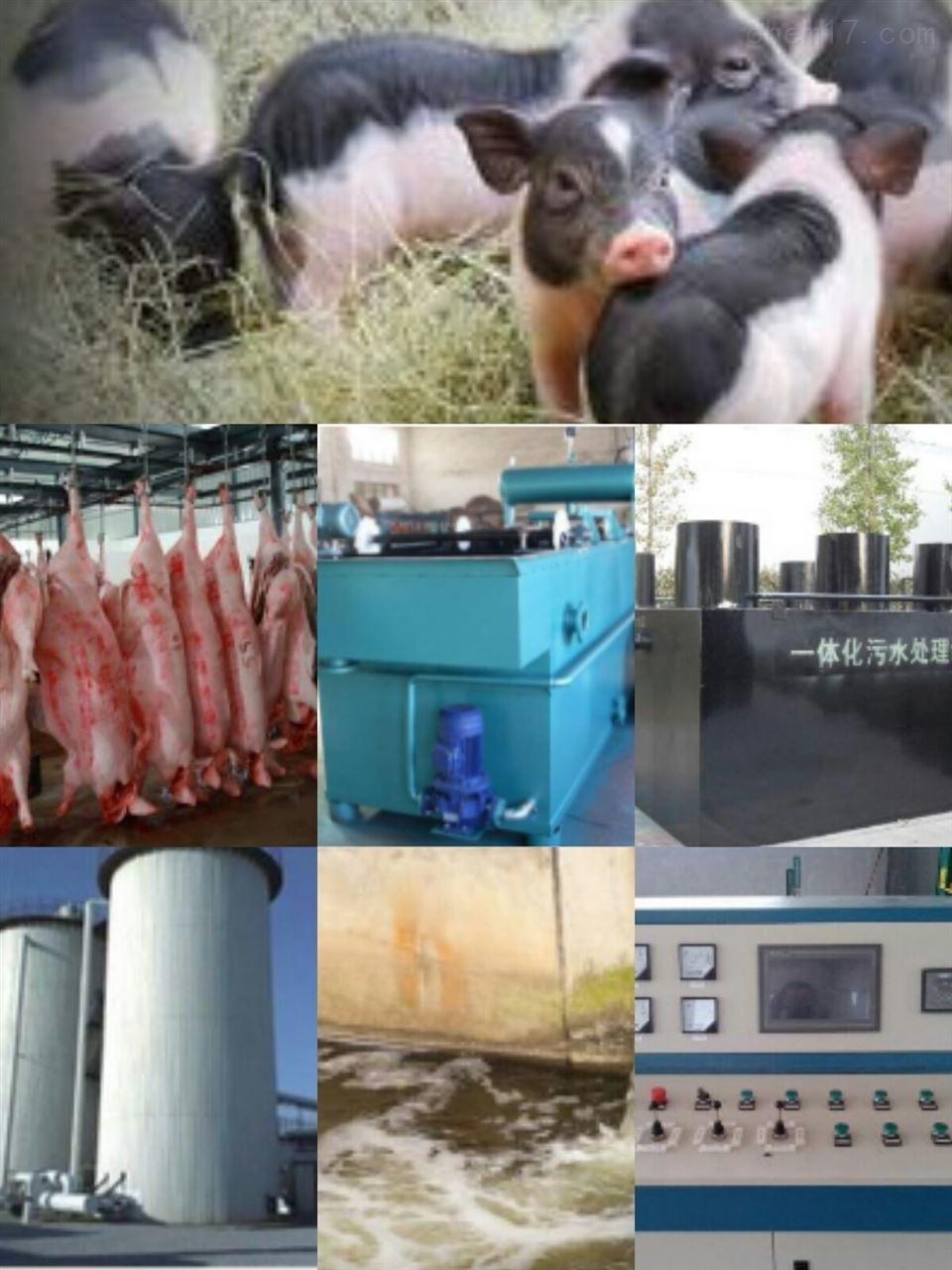 德宏州成套屠宰污水处理设备