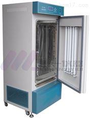 双重门恒温恒湿培养箱HWS-70B恒湿试验箱