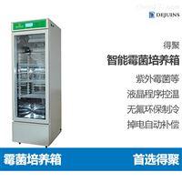 DJMJX霉菌培养箱微生物培养孵化植物动物恒温箱
