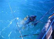 泉州潜水员服务公司推荐队伍