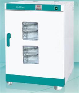 恒温恒湿箱培养箱HWS-250BIII/HWS-250BX