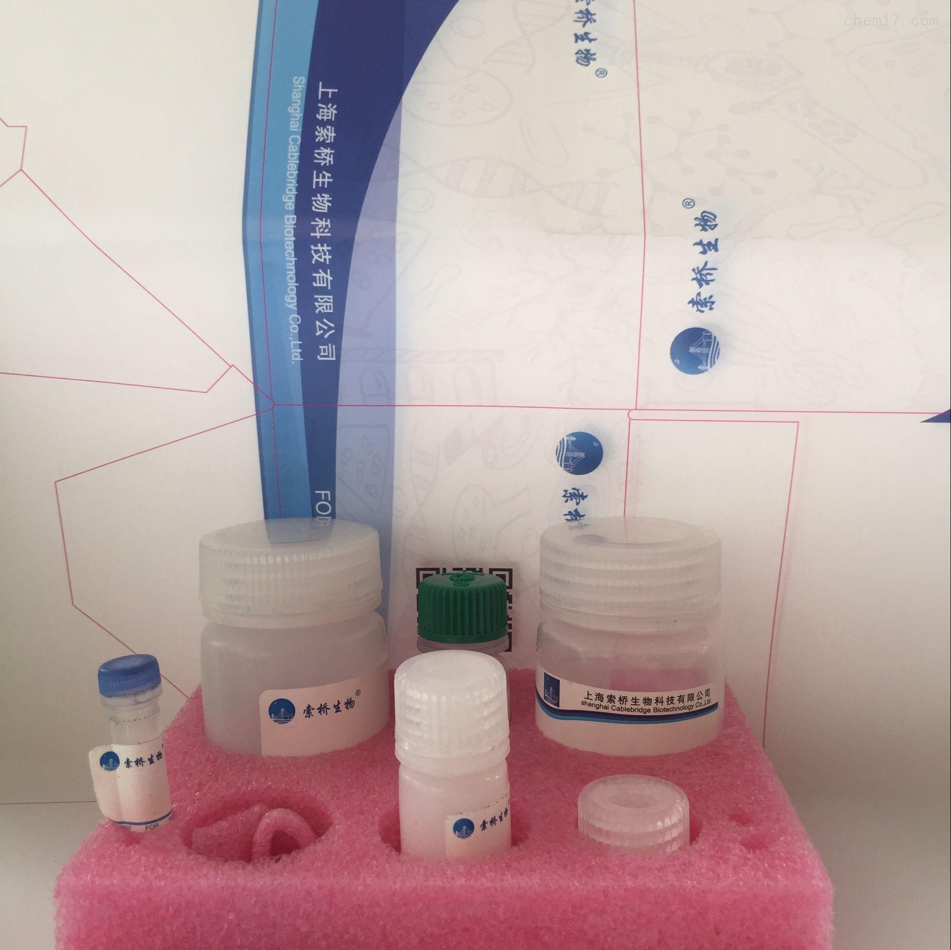 BCA蛋白法含量测试盒