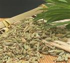 天然小茴香粉吨位现货供应全国调味料
