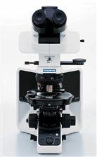 olympus奧林巴斯專業偏光顯微鏡BX53P