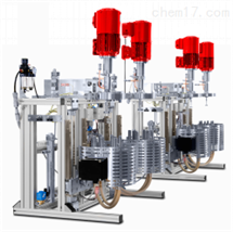 1L/2L磁力反應器-Pinto