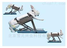多功能兔固定架图片