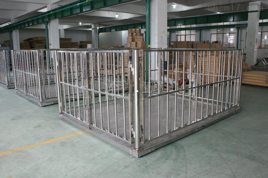 带围栏的平台电子称/牲畜称湖南湖北江西