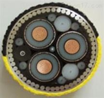 阻燃屏蔽控制电缆ZRKVVP2-22 12*1.5