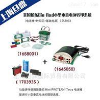1658033美国伯乐Bio-Rad小型垂直电泳转印系统