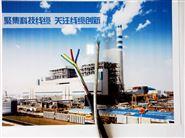 MHYBV- 10*2*0.8矿用通信电缆MHYBV