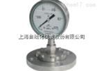 YTP-100-ML隔膜压力表