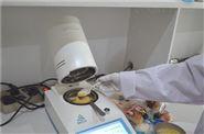 胶水胶液固含量检测仪价格、图片