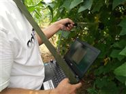 植物冠層圖像分析儀