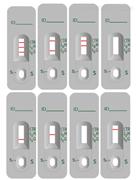 Campylobacter抗原联合试剂盒-免疫荧光法