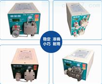 PPS系列小流量进料泵