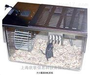 大小鼠活动轮系统测试研究
