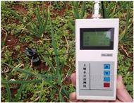 PH-3MST土壤温湿度自动记录仪厂家