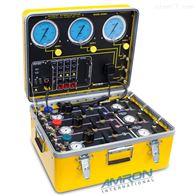 Amron 8330iC美进口Amron  8330IC-01潜水监测系统