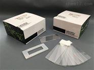透明室-用于组织透明化样品的成像室