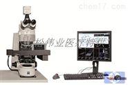 MetaSystems染色體自動掃描分析系統