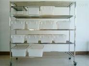 实验室大鼠笼架 厂家 不锈钢架 含鼠笼