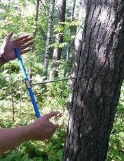 CO800B林业树木生长锥 瑞典钻取树木木芯仪