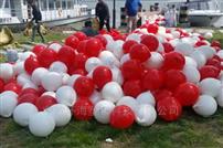FQ25遼甯景區水域警戒浮球 25公分PE浮球