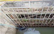 吐鲁番水下救援队公司水下快速搜救服务