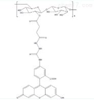 红绿荧光标记FITC标记葡聚糖/FITC标记右旋糖酐
