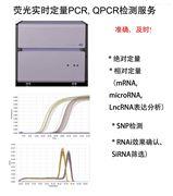 熒光定量Q-PCR檢測技術