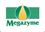 Megazym