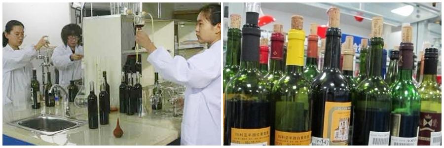 金索坤公司动态-葡萄酒
