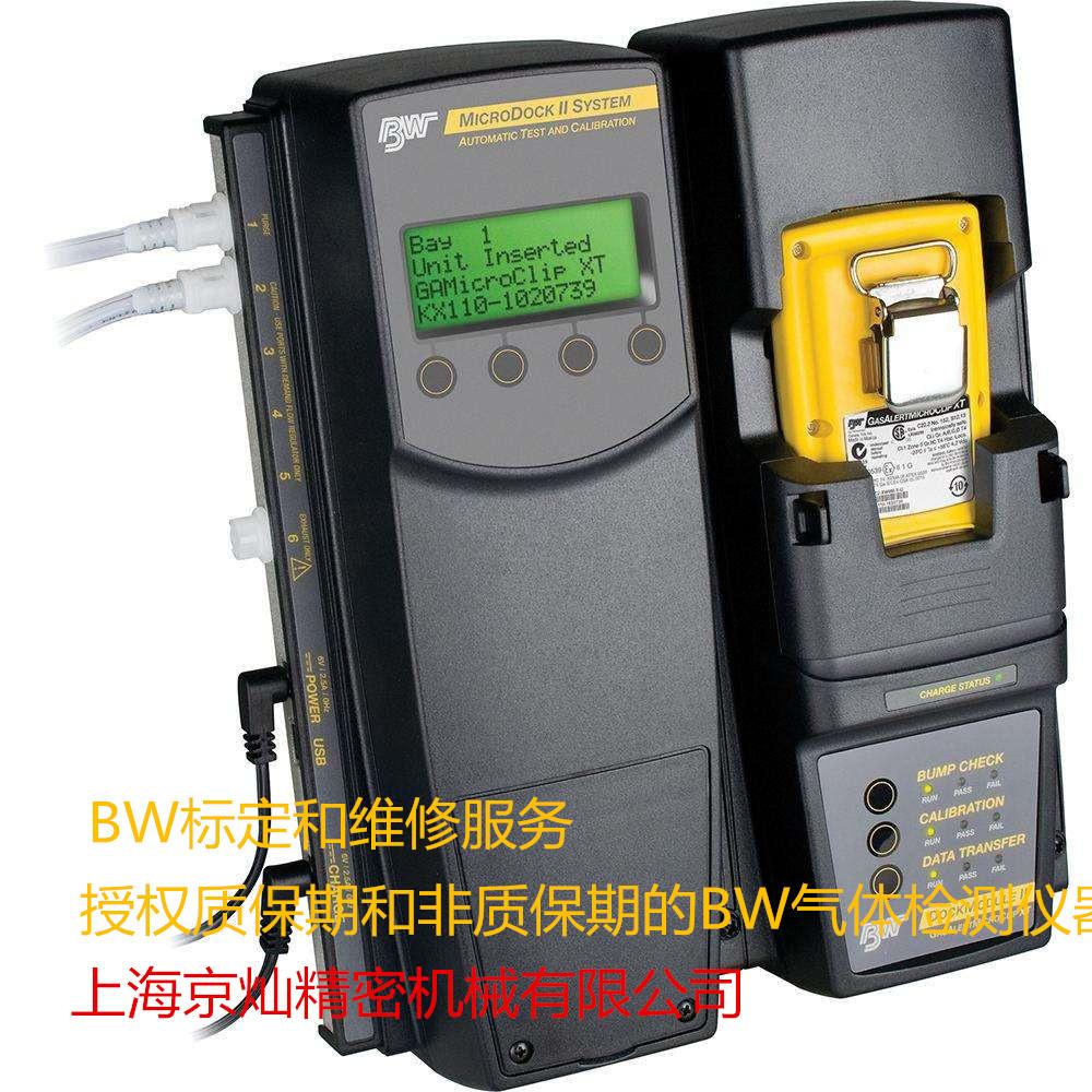 BW氣體檢測儀