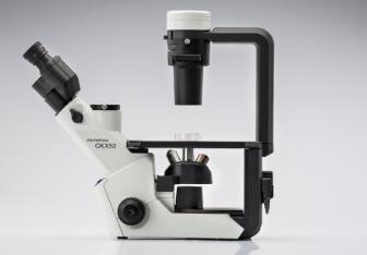 <strong>OLYMPUS奥林巴斯倒置生物显微镜CKX53</strong>