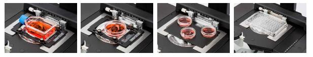 OLYMPUS奥林巴斯倒置生物显微镜CKX53适配器