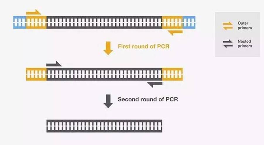 曹式PCR仪