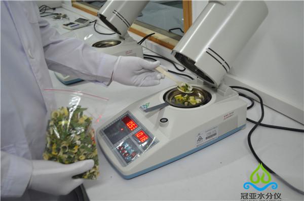 脱水蔬菜水分测定仪