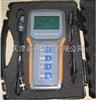 DO-20便攜式手持式溶氧儀