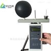 厂家低价供应WBGT-2006型热指数仪
