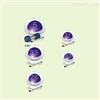 美国phenomenex菲罗门Kinetex系列色谱柱