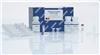52904、52906Qiagen52904/52906病毒核酸RNA提取试剂盒
